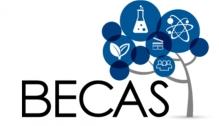 becas_0.jpg